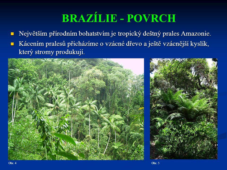 BRAZÍLIE – SÍDLA Rio de Janeiro Největším skvostem mezi brazilskými městy je Rio De Janeiro.