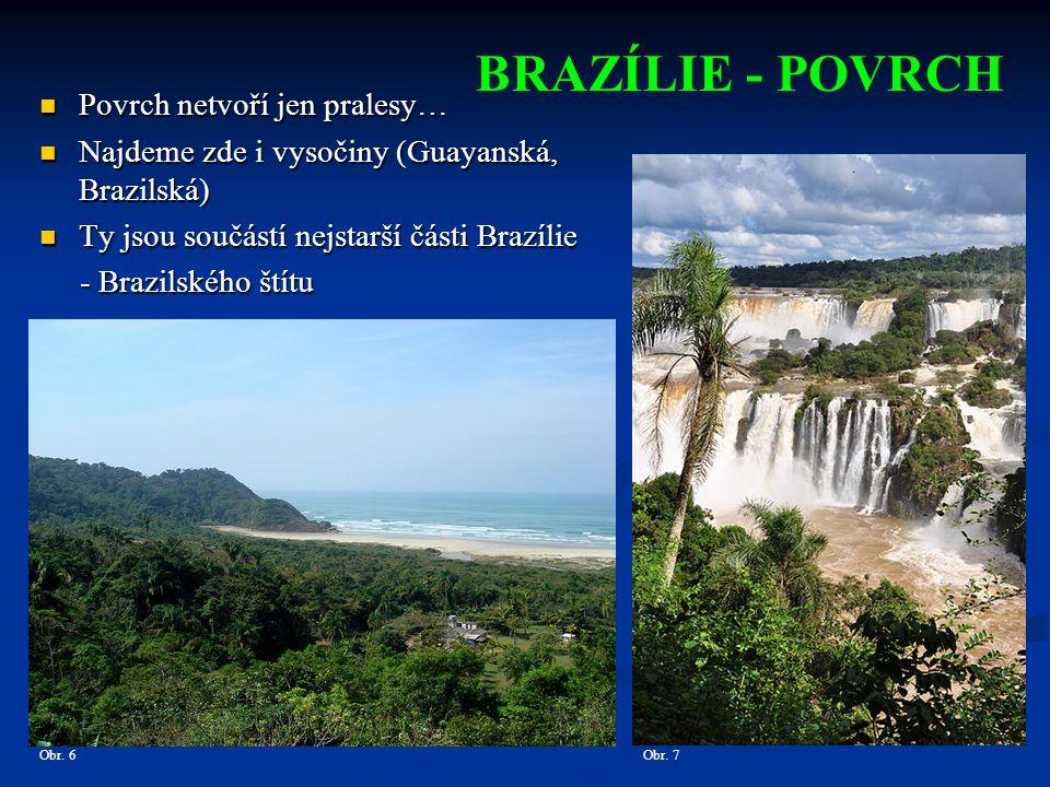 BRAZÍLIE - POVRCH Obr.9Obr.