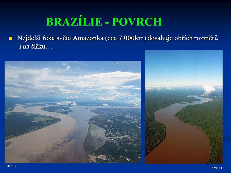 Obr. 10 BRAZÍLIE - POVRCH Nejdelší řeka světa Amazonka (cca 7 000km) dosahuje obřích rozměrů Nejdelší řeka světa Amazonka (cca 7 000km) dosahuje obříc