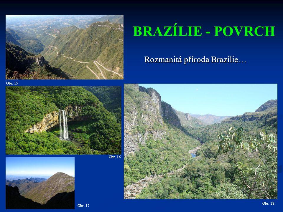 BRAZÍLIE - POVRCH Obr. 16 Obr. 15 Rozmanitá příroda Brazílie… Obr. 17 Obr. 18