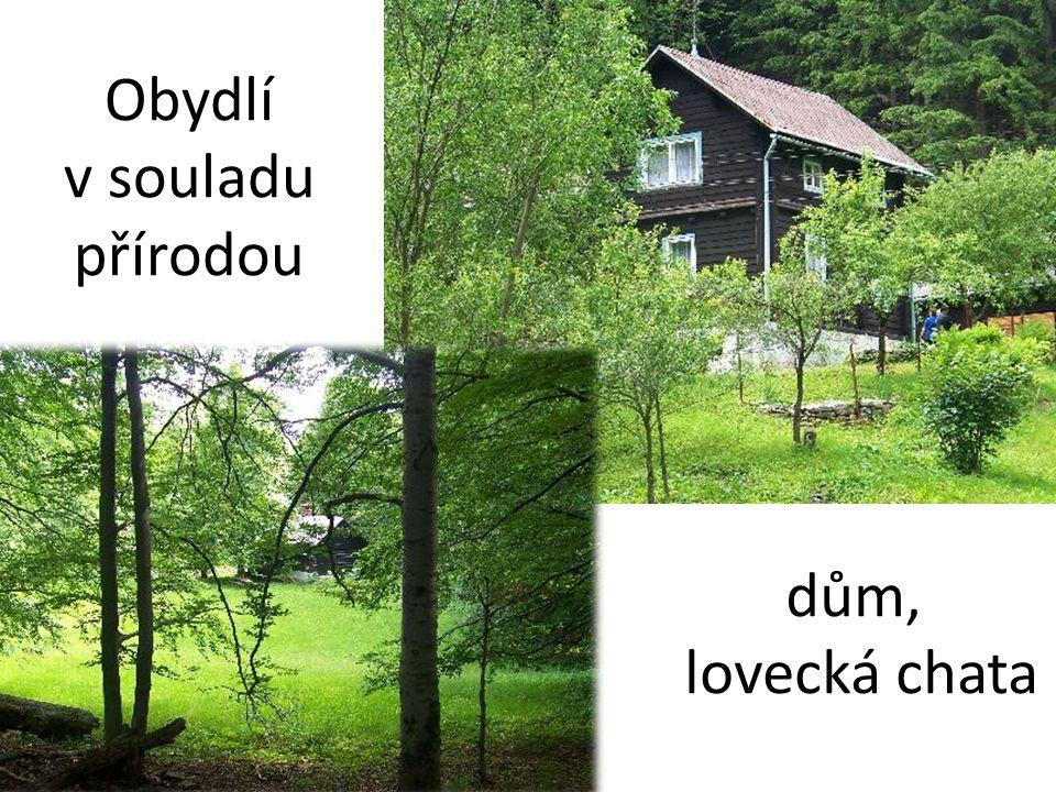Obydlí v souladu přírodou dům, lovecká chata