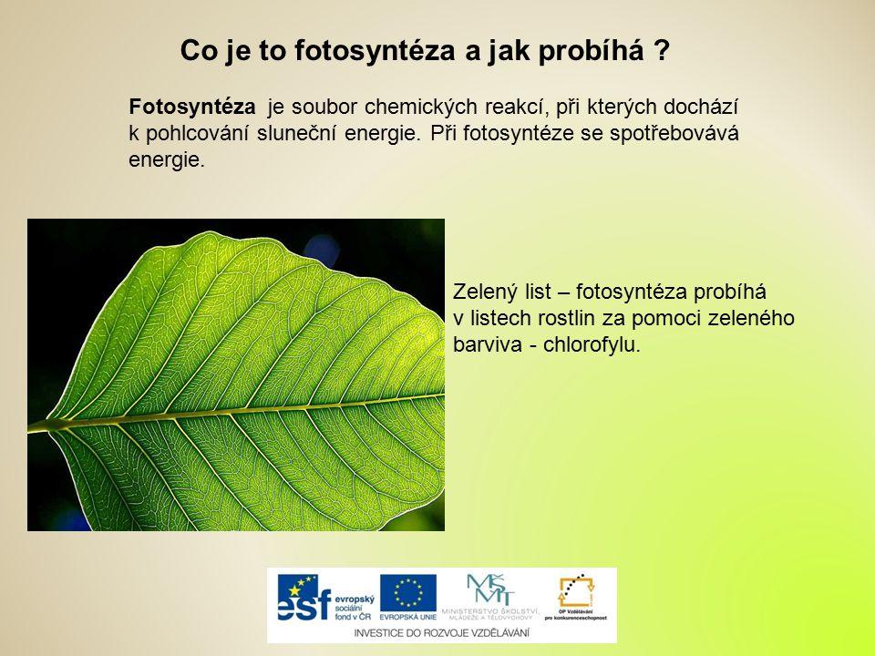 Co je to fotosyntéza a jak probíhá ? Fotosyntéza je soubor chemických reakcí, při kterých dochází k pohlcování sluneční energie. Při fotosyntéze se sp