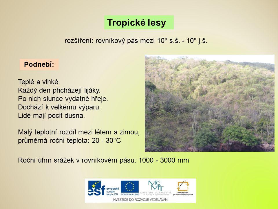 Tropické lesy Podnebí: Teplé a vlhké. Každý den přicházejí lijáky. Po nich slunce vydatně hřeje. Dochází k velkému výparu. Lidé mají pocit dusna. rozš