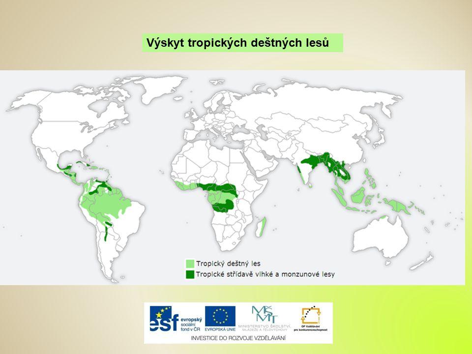 Výskyt tropických deštných lesů