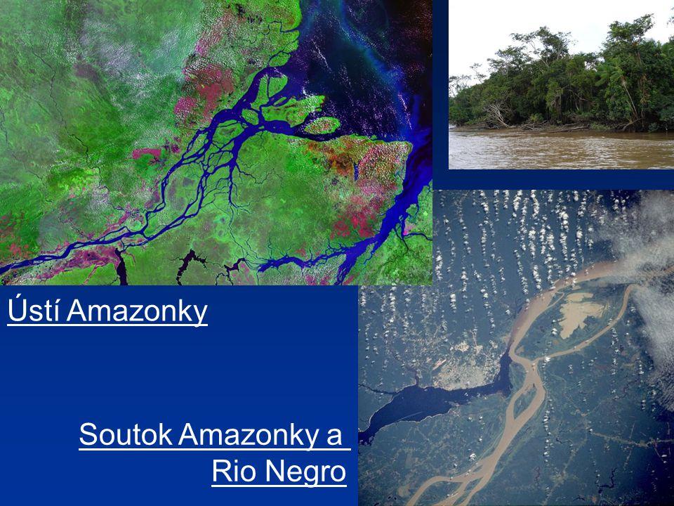 Ústí Amazonky Soutok Amazonky a Rio Negro