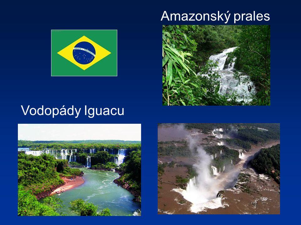 Vodopády Iguacu Amazonský prales