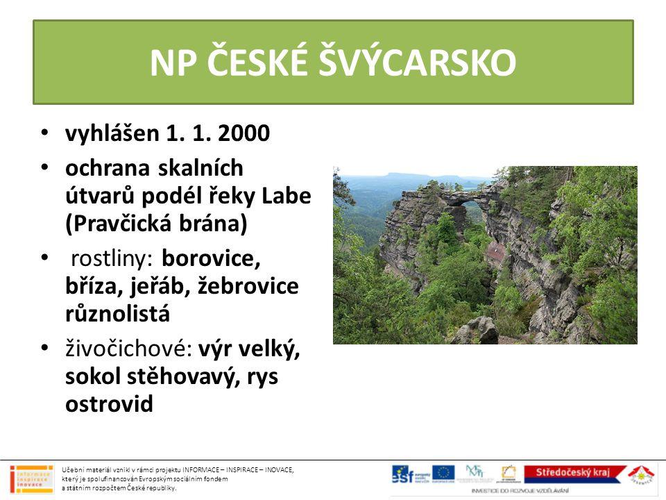 NP ČESKÉ ŠVÝCARSKO vyhlášen 1. 1. 2000 ochrana skalních útvarů podél řeky Labe (Pravčická brána) rostliny: borovice, bříza, jeřáb, žebrovice různolist
