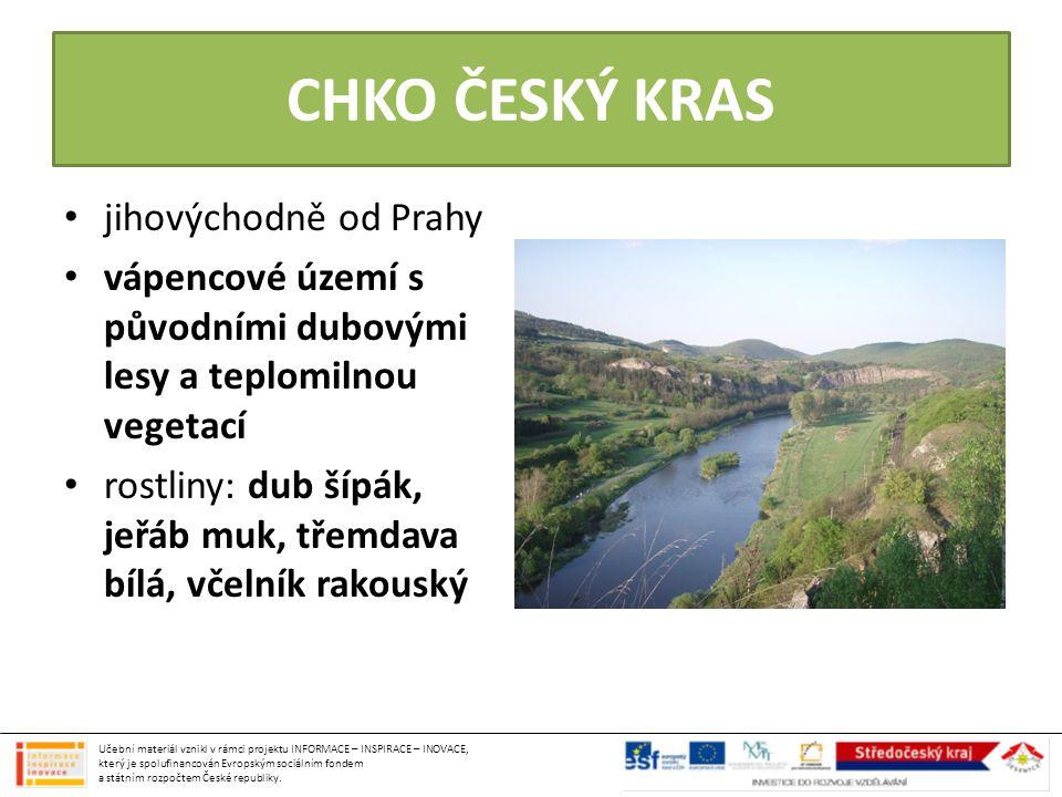 CHKO ČESKÝ KRAS jihovýchodně od Prahy vápencové území s původními dubovými lesy a teplomilnou vegetací rostliny: dub šípák, jeřáb muk, třemdava bílá,