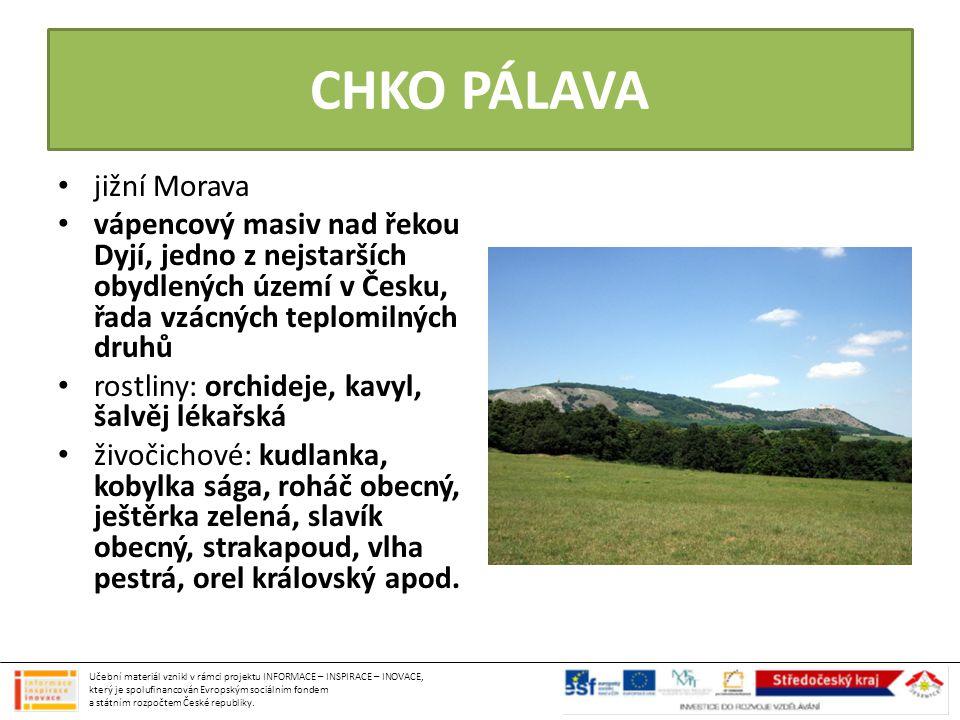 CHKO PÁLAVA jižní Morava vápencový masiv nad řekou Dyjí, jedno z nejstarších obydlených území v Česku, řada vzácných teplomilných druhů rostliny: orch