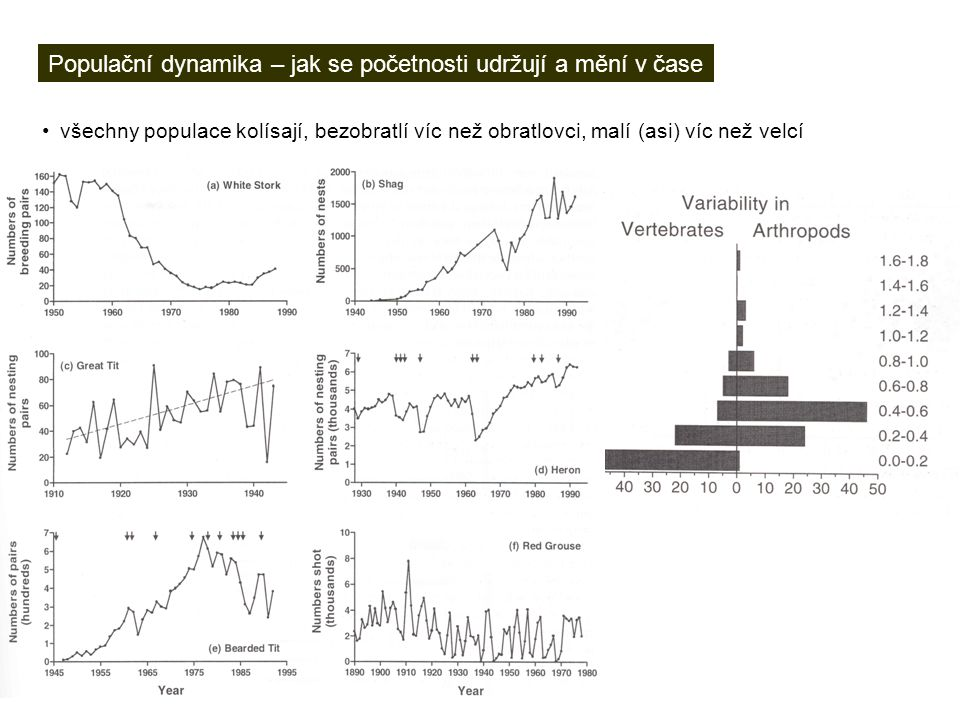 Populační dynamika – jak se početnosti udržují a mění v čase všechny populace kolísají, bezobratlí víc než obratlovci, malí (asi) víc než velcí