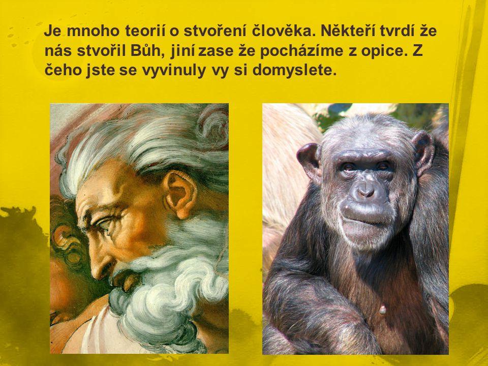 Je mnoho teorií o stvoření člověka. Někteří tvrdí že nás stvořil Bůh, jiní zase že pocházíme z opice. Z čeho jste se vyvinuly vy si domyslete.