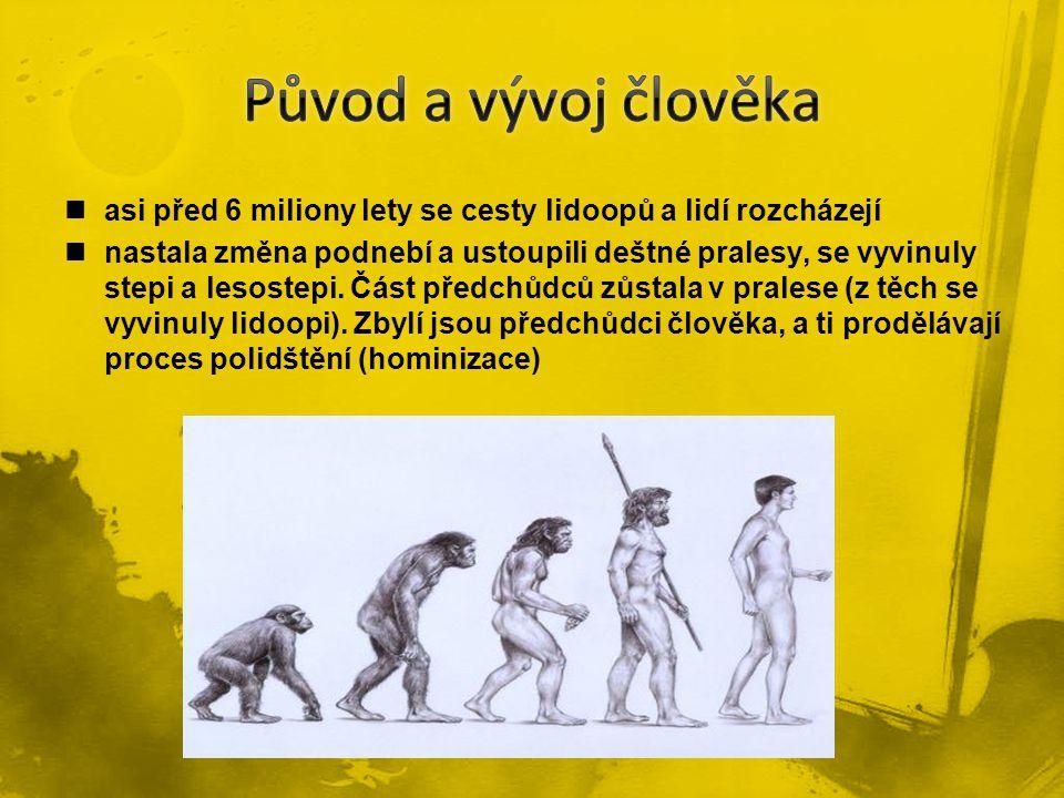 asi před 6 miliony lety se cesty lidoopů a lidí rozcházejí nastala změna podnebí a ustoupili deštné pralesy, se vyvinuly stepi a lesostepi. Část předc