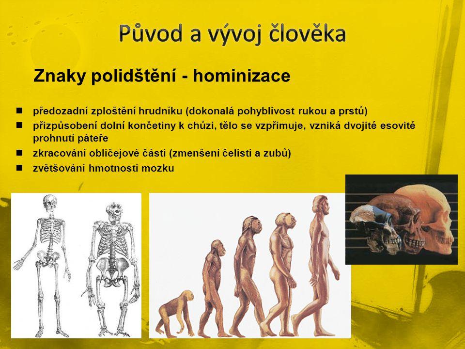předozadní zploštění hrudníku (dokonalá pohyblivost rukou a prstů) přizpůsobení dolní končetiny k chůzi, tělo se vzpřimuje, vzniká dvojité esovité pro