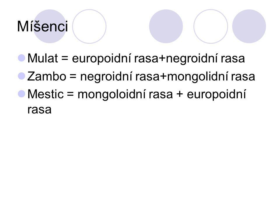 Míšenci Mulat = europoidní rasa+negroidní rasa Zambo = negroidní rasa+mongolidní rasa Mestic = mongoloidní rasa + europoidní rasa