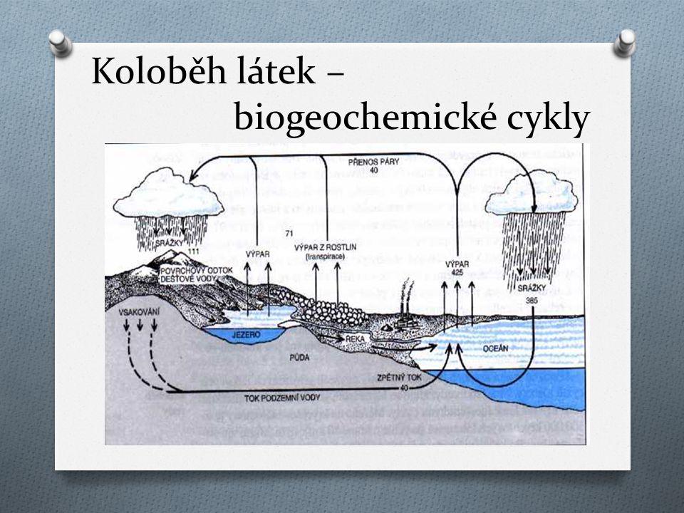 Koloběh látek – biogeochemické cykly