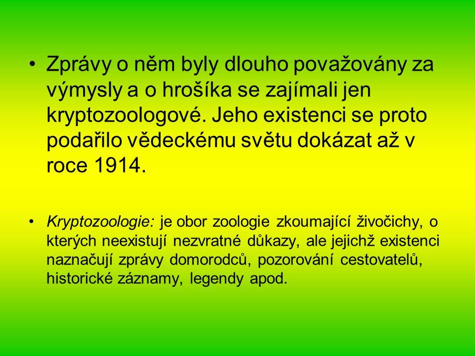 Zprávy o něm byly dlouho považovány za výmysly a o hrošíka se zajímali jen kryptozoologové. Jeho existenci se proto podařilo vědeckému světu dokázat a
