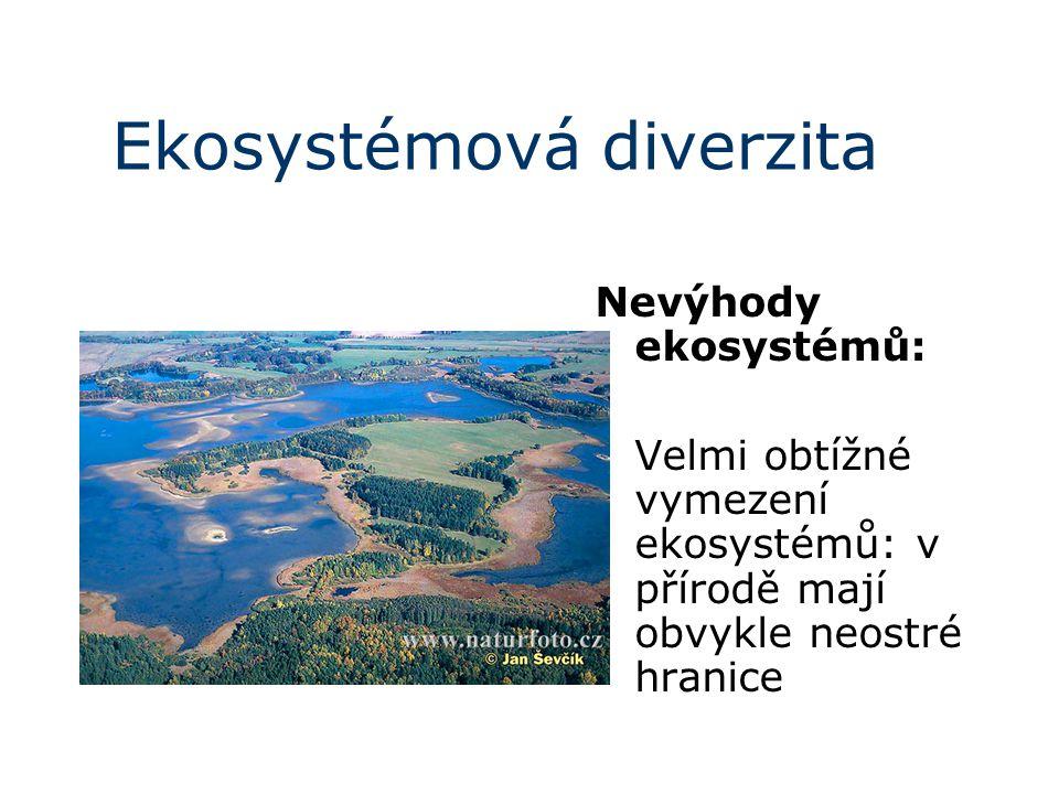 Ekosystémová diverzita Nevýhody ekosystémů: Velmi obtížné vymezení ekosystémů: v přírodě mají obvykle neostré hranice