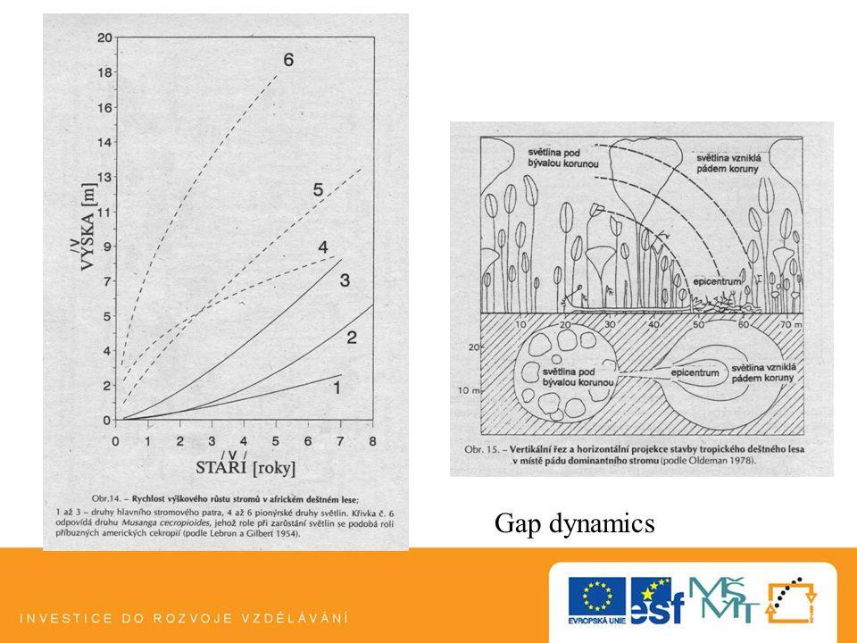 Gap dynamics