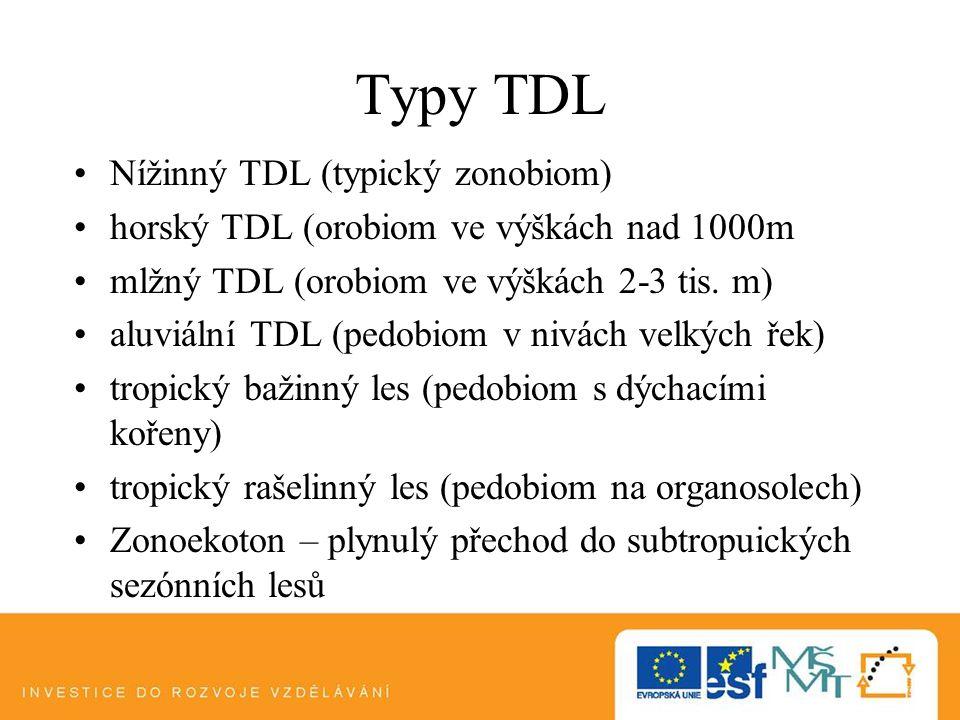 Typy TDL Nížinný TDL (typický zonobiom) horský TDL (orobiom ve výškách nad 1000m mlžný TDL (orobiom ve výškách 2-3 tis. m) aluviální TDL (pedobiom v n