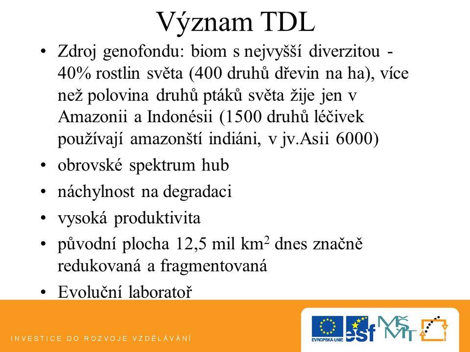 Význam TDL Zdroj genofondu: biom s nejvyšší diverzitou - 40% rostlin světa (400 druhů dřevin na ha), více než polovina druhů ptáků světa žije jen v Am
