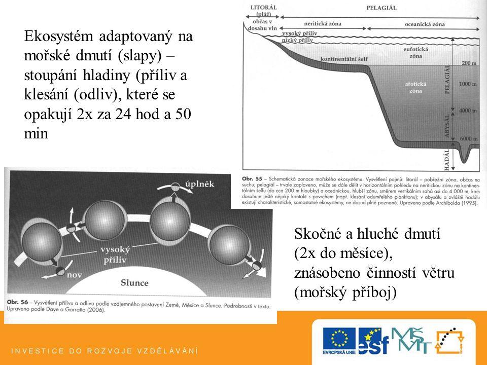 Ekosystém adaptovaný na mořské dmutí (slapy) – stoupání hladiny (příliv a klesání (odliv), které se opakují 2x za 24 hod a 50 min Skočné a hluché dmut