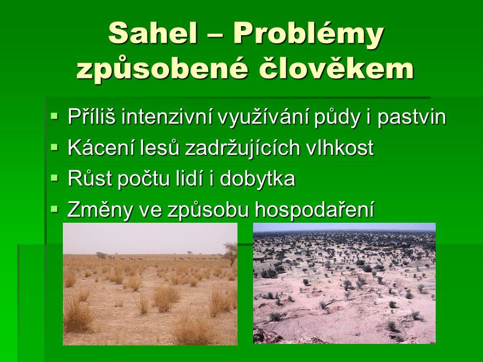 Sahel – Problémy způsobené člověkem  Příliš intenzivní využívání půdy i pastvin  Kácení lesů zadržujících vlhkost  Růst počtu lidí i dobytka  Změn