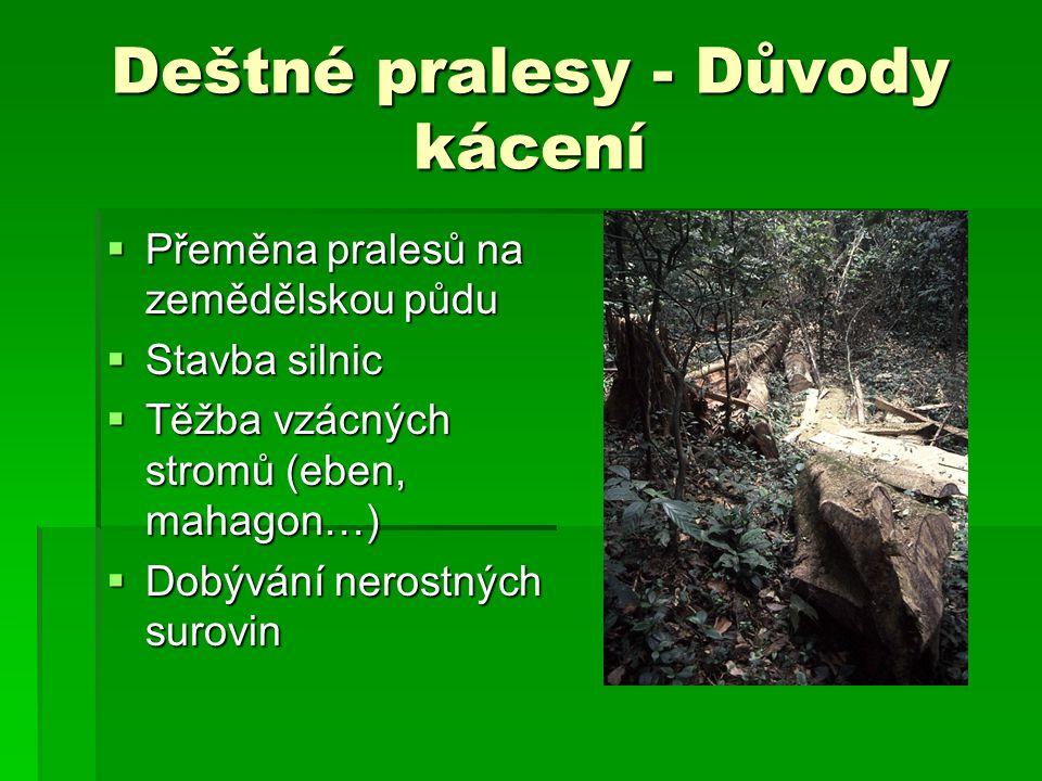 Deštné pralesy - Důvody kácení  Přeměna pralesů na zemědělskou půdu  Stavba silnic  Těžba vzácných stromů (eben, mahagon…)  Dobývání nerostných su