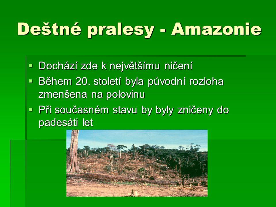 Deštné pralesy - Amazonie  Dochází zde k největšímu ničení  Během 20. století byla původní rozloha zmenšena na polovinu  Při současném stavu by byl