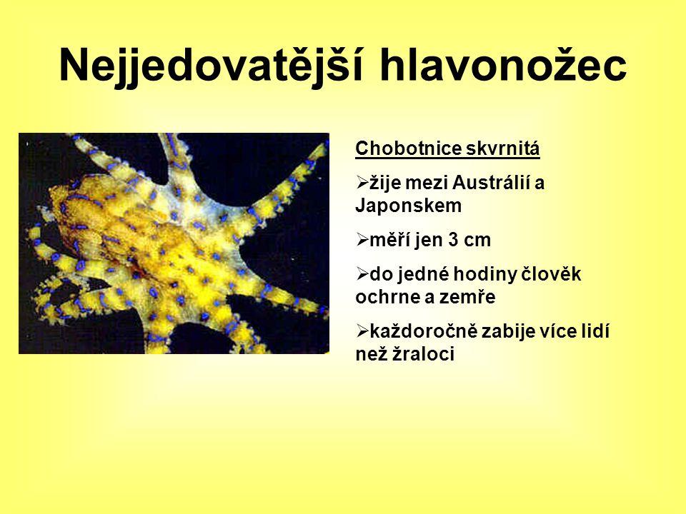 Nejjedovatější škorpion Štír tlustorepý  výskyt v Severní Africe  velikost 13 cm  po uštknutí umírá 1% dospělých a 8% dětí  pro svoji hojnost má však na svědomí 90% smrtelných uštknutí mezi štíry v této oblasti