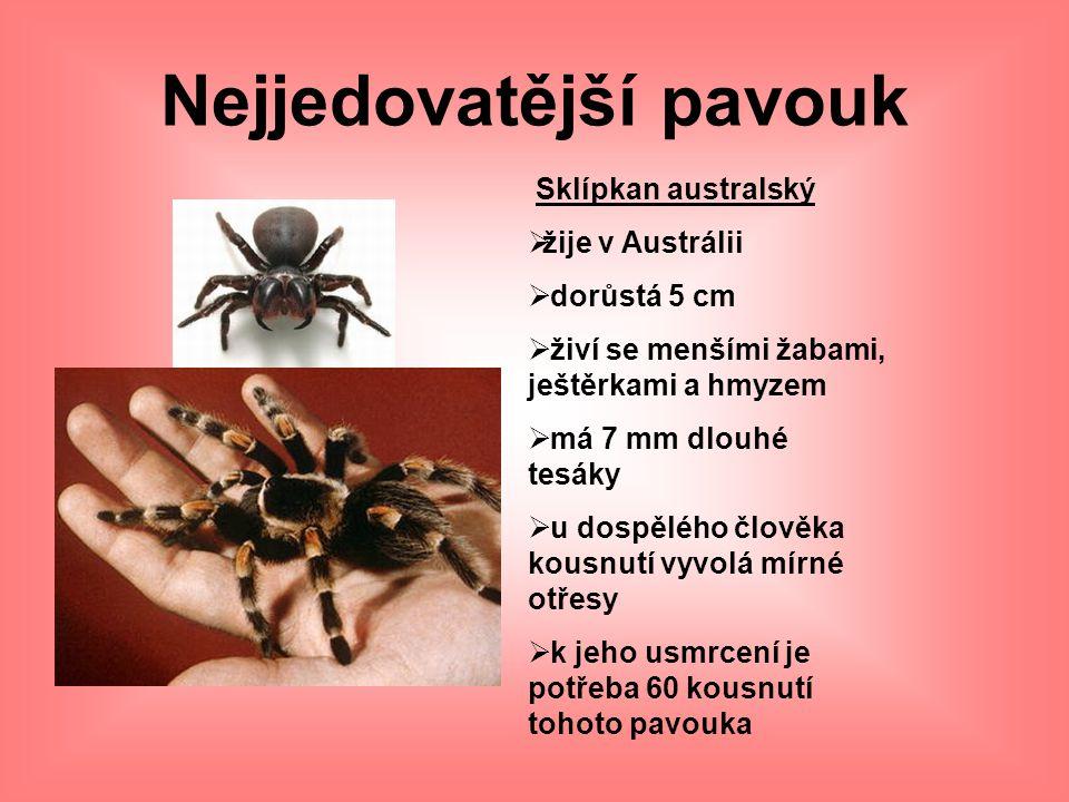Nejjedovatější pavouk Sklípkan australský  žije v Austrálii  dorůstá 5 cm  živí se menšími žabami, ještěrkami a hmyzem  má 7 mm dlouhé tesáky  u
