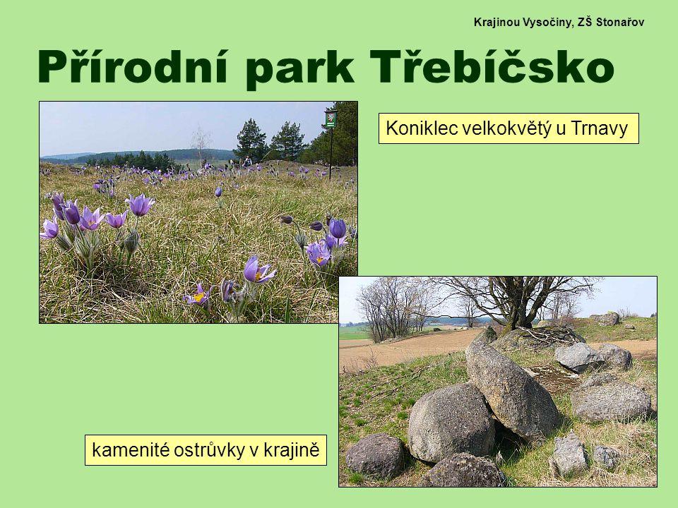 Krajinou Vysočiny, ZŠ Stonařov Přírodní park Třebíčsko Koniklec velkokvětý u Trnavy kamenité ostrůvky v krajině