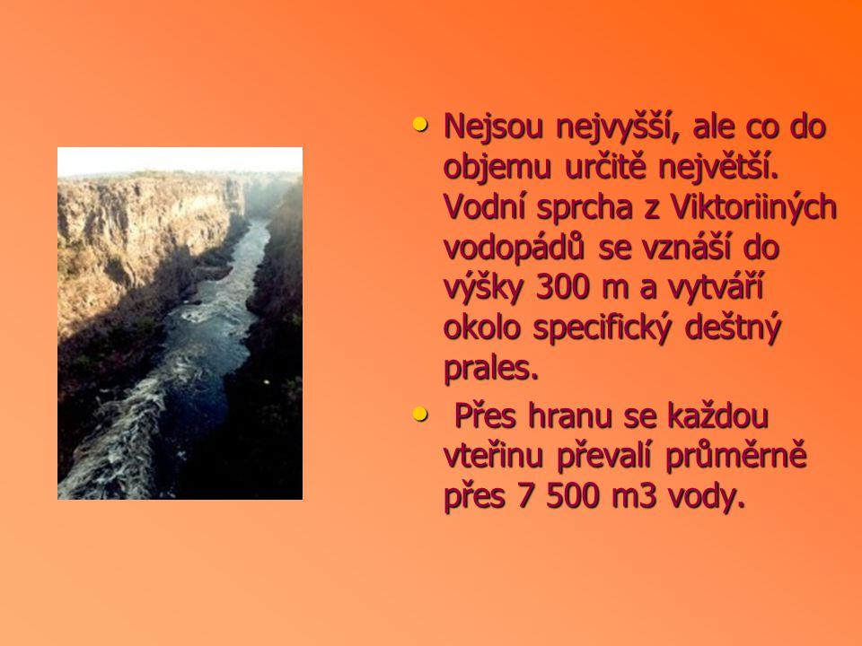 Nejsou nejvyšší, ale co do objemu určitě největší. Vodní sprcha z Viktoriiných vodopádů se vznáší do výšky 300 m a vytváří okolo specifický deštný pra