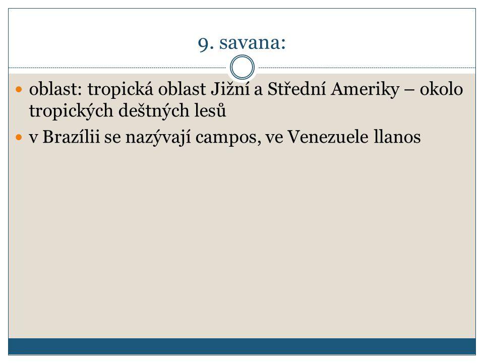 9. savana: oblast: tropická oblast Jižní a Střední Ameriky – okolo tropických deštných lesů v Brazílii se nazývají campos, ve Venezuele llanos