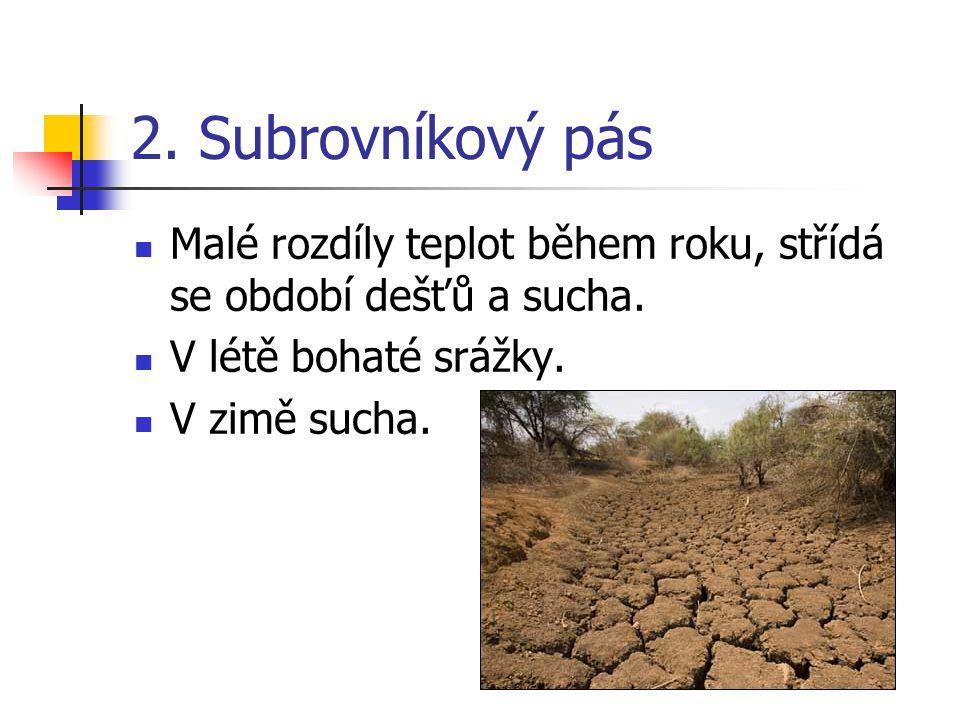 2. Subrovníkový pás Malé rozdíly teplot během roku, střídá se období dešťů a sucha. V létě bohaté srážky. V zimě sucha.