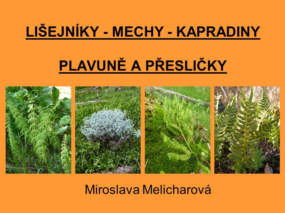 LIŠEJNÍKY - MECHY - KAPRADINY PLAVUNĚ A PŘESLIČKY Miroslava Melicharová