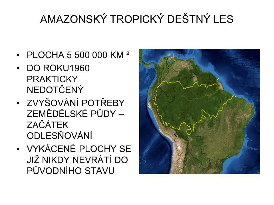 AMAZONSKÝ TROPICKÝ DEŠTNÝ LES PLOCHA 5 500 000 KM ² DO ROKU1960 PRAKTICKY NEDOTČENÝ ZVYŠOVÁNÍ POTŘEBY ZEMĚDĚLSKÉ PŮDY – ZAČÁTEK ODLESŇOVÁNÍ VYKÁCENÉ PLOCHY SE JIŽ NIKDY NEVRÁTÍ DO PŮVODNÍHO STAVU
