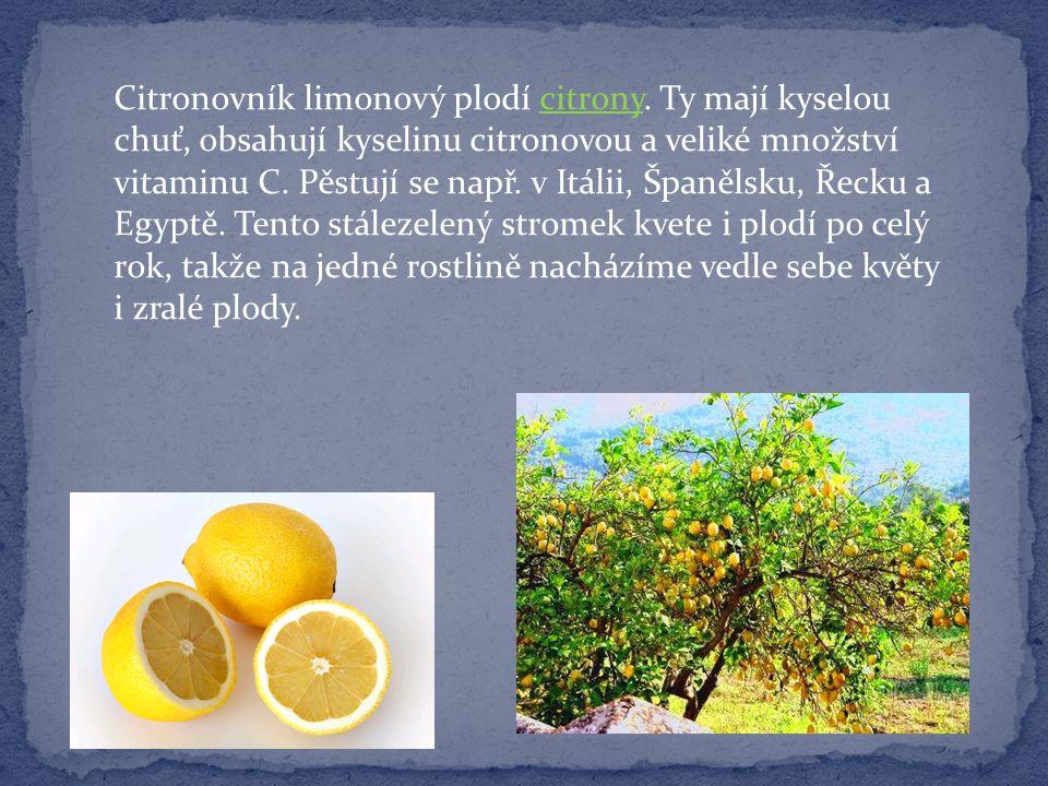 Citronovník limonový plodí citrony. Ty mají kyselou chuť, obsahují kyselinu citronovou a veliké množství vitaminu C. Pěstují se např. v Itálii, Španěl