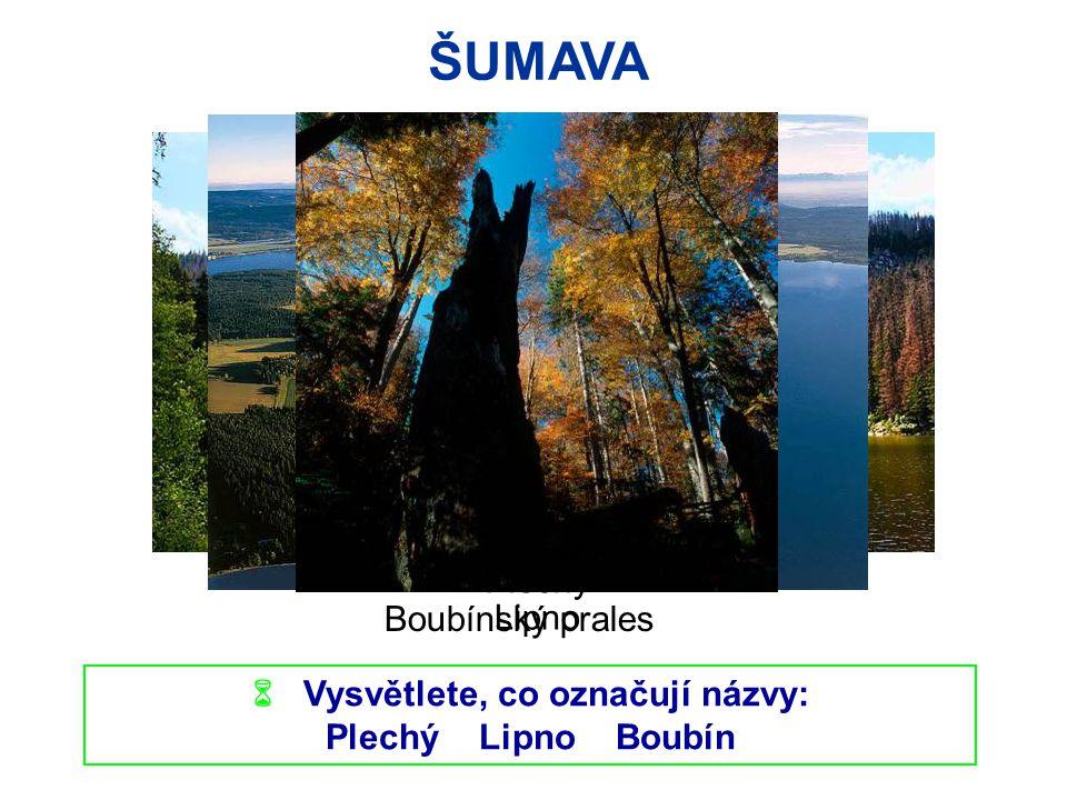 ŠUMAVA  Vysvětlete, co označují názvy: Plechý Lipno Boubín Boubínský prales Plechý Lipno