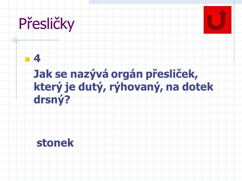 Přesličky 4 Jak se nazývá orgán přesliček, který je dutý, rýhovaný, na dotek drsný? stonek