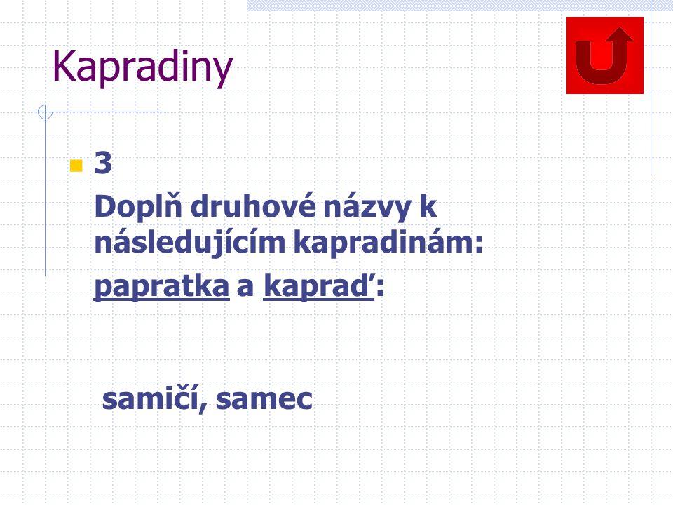 Kapradiny 3 Doplň druhové názvy k následujícím kapradinám: papratka a kapraď: samičí, samec