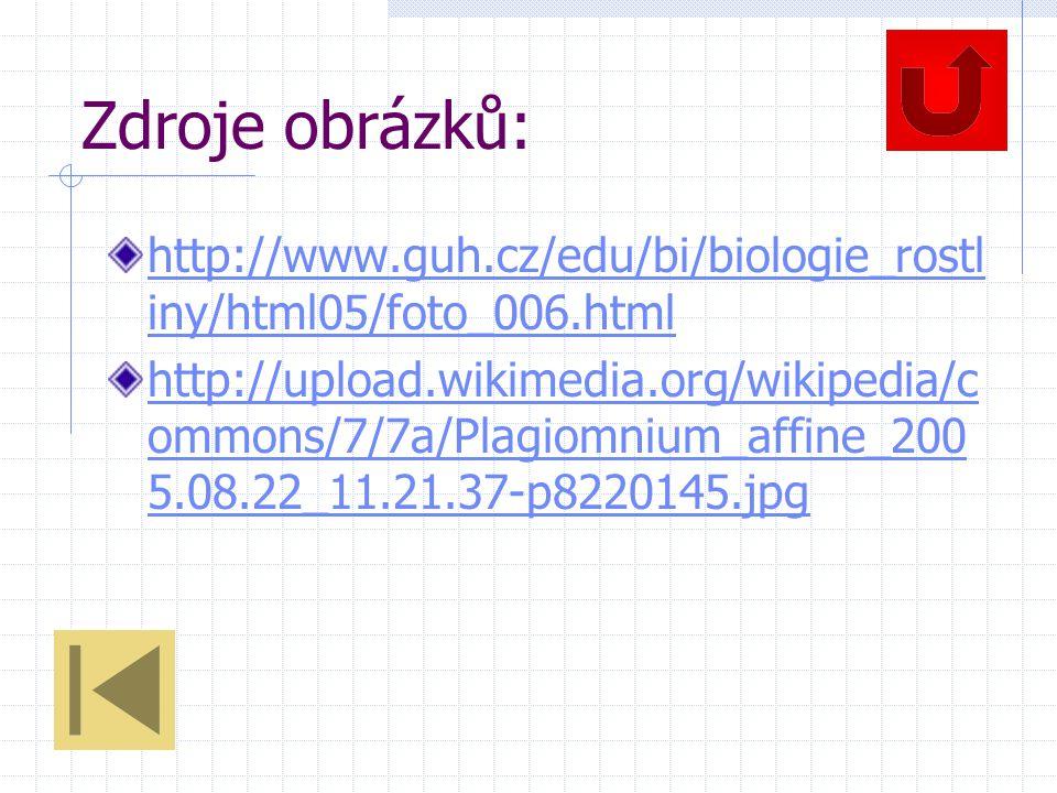 Zdroje obrázků: http://www.guh.cz/edu/bi/biologie_rostl iny/html05/foto_006.html http://upload.wikimedia.org/wikipedia/c ommons/7/7a/Plagiomnium_affine_200 5.08.22_11.21.37-p8220145.jpg