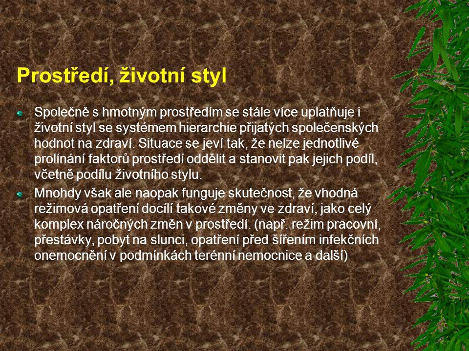 Prostředí, životní styl Společně s hmotným prostředím se stále více uplatňuje i životní styl se systémem hierarchie přijatých společenských hodnot na