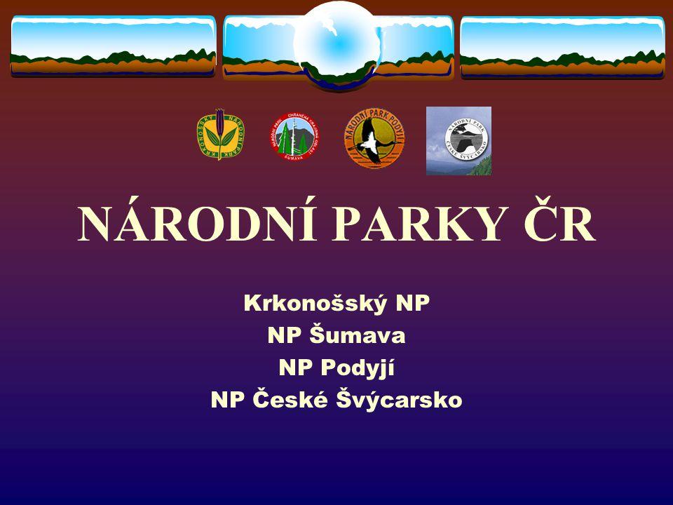 HISTORIE NÁRODNÍCH PARKŮ NA ÚZEMÍ ČR První národní park na našem území byl Krkonošský národní park, vyhlášený v roce 1963.
