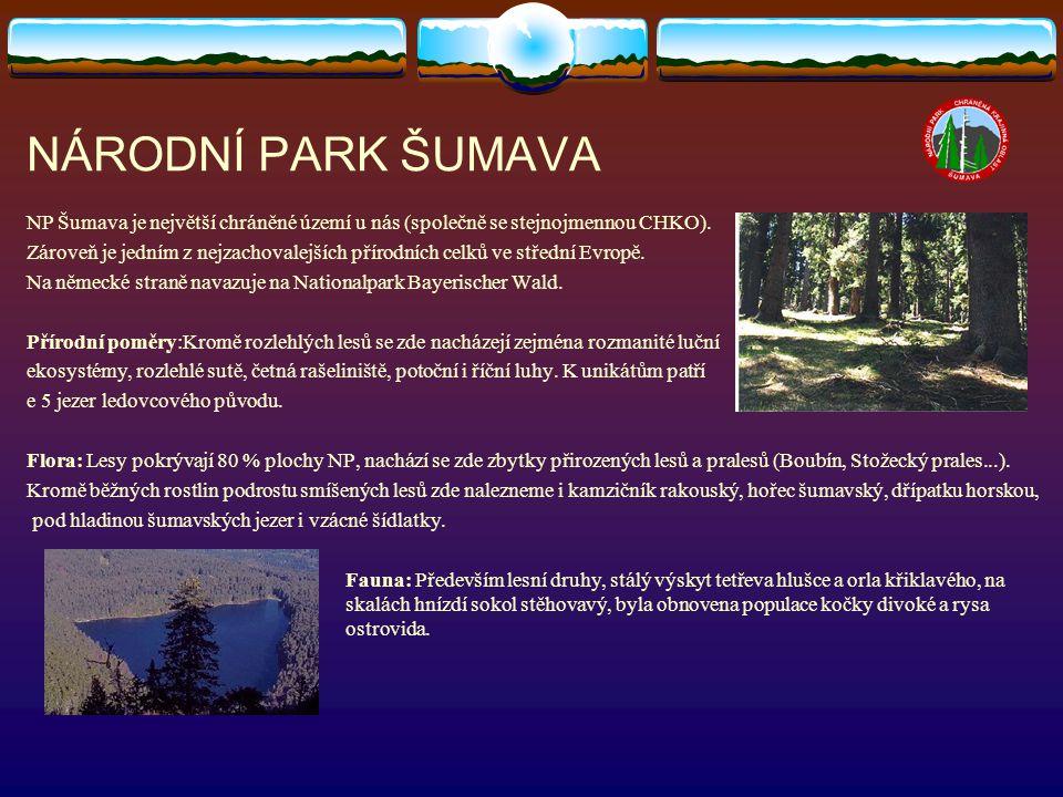 NÁRODNÍ PARK ŠUMAVA NP Šumava je největší chráněné území u nás (společně se stejnojmennou CHKO). Zároveň je jedním z nejzachovalejších přírodních celk