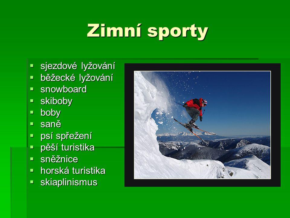 Zimní sporty  sjezdové lyžování  běžecké lyžování  snowboard  skiboby  boby  saně  psí spřežení  pěší turistika  sněžnice  horská turistika  skiaplinismus