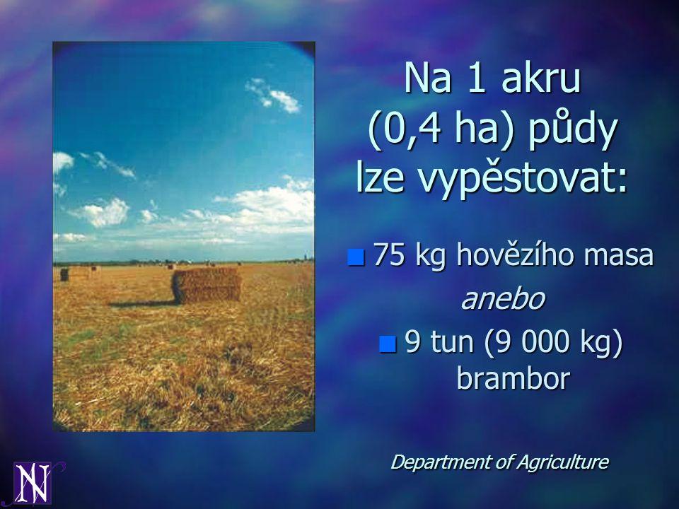 Na 1 akru (0,4 ha) půdy lze vypěstovat: n 75 kg hovězího masa anebo n 9 tun (9 000 kg) brambor Department of Agriculture