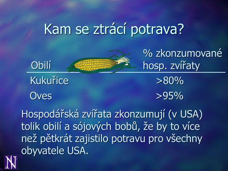 Kam se ztrácí potrava? Kukuřice>80% Oves>95% Obilí % zkonzumované hosp. zvířaty Hospodářská zvířata zkonzumují (v USA) tolik obilí a sójových bobů, že