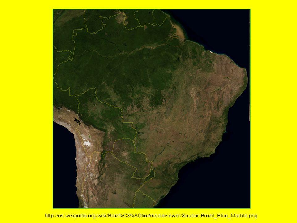 http://cs.wikipedia.org/wiki/Braz%C3%ADlie#mediaviewer/Soubor:Brazil_Blue_Marble.png
