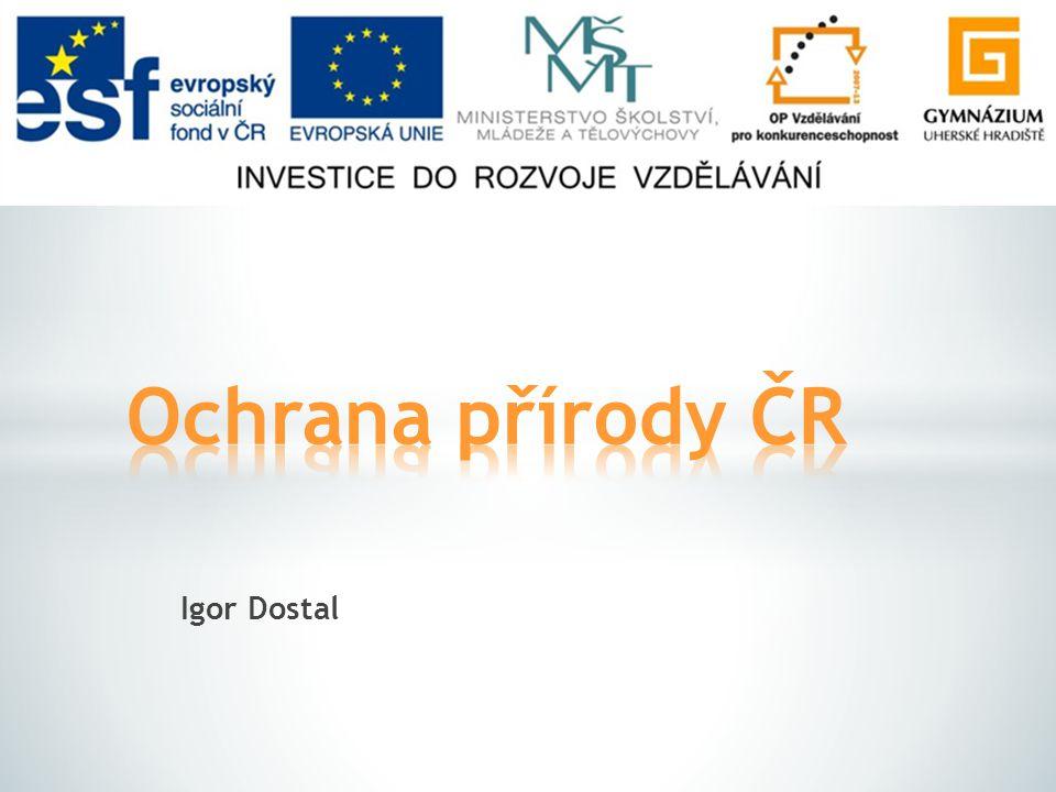  Základní pojmy  Typy krajiny  Historie ochrany krajiny v ČR  Dělení chráněných území v ČR