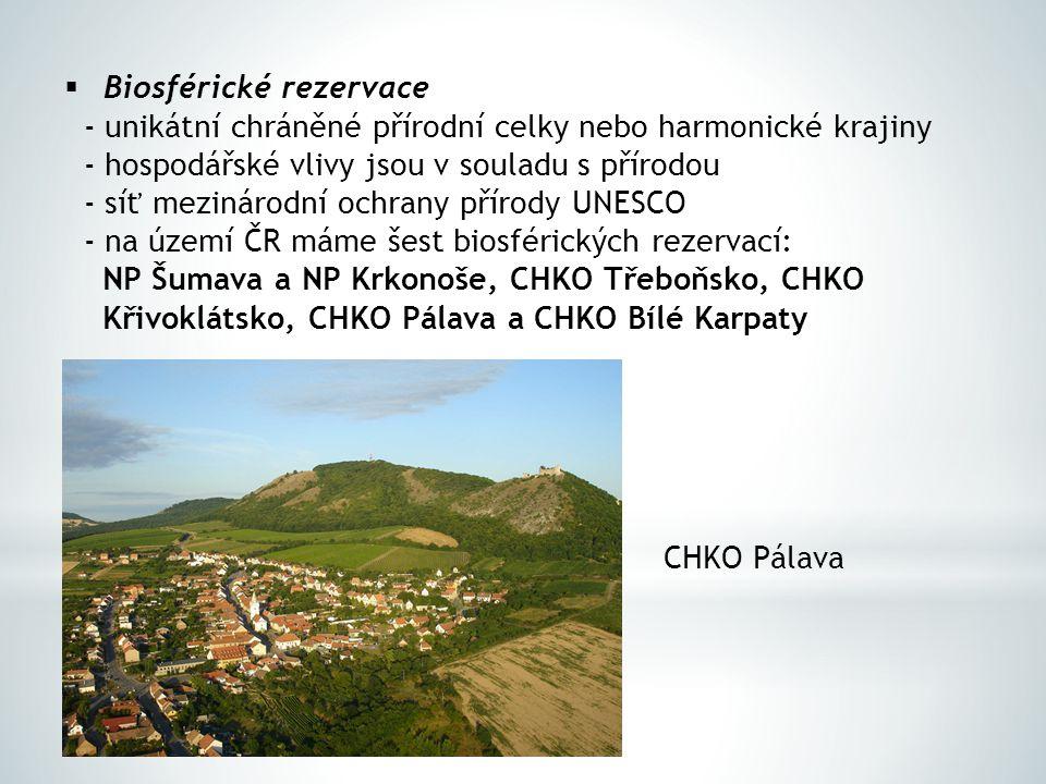  Biosférické rezervace - unikátní chráněné přírodní celky nebo harmonické krajiny - hospodářské vlivy jsou v souladu s přírodou - síť mezinárodní och